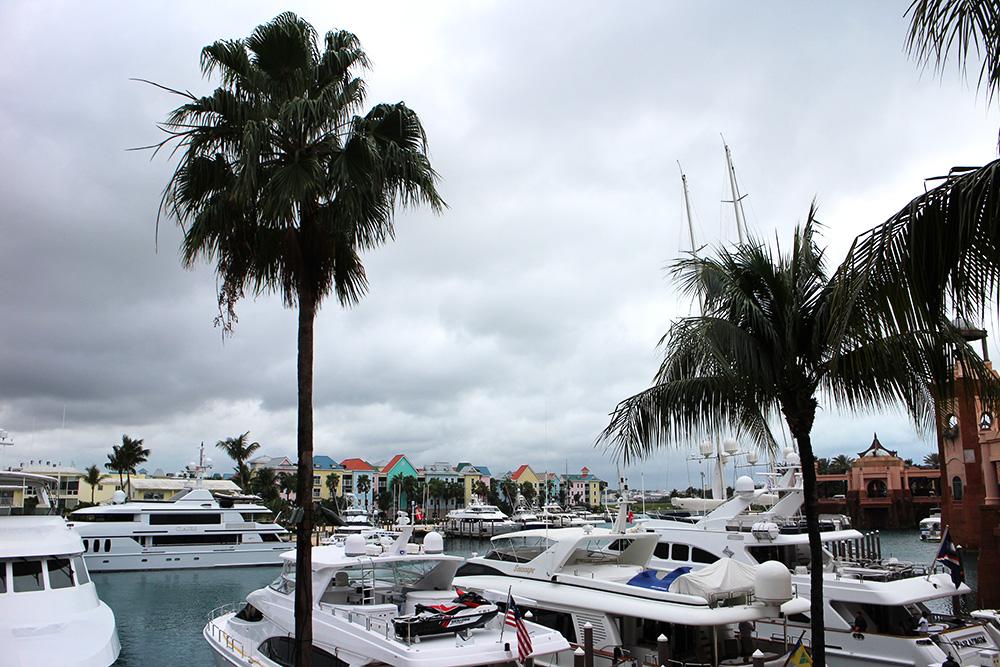 IHEARTALICE_Bahamas_52