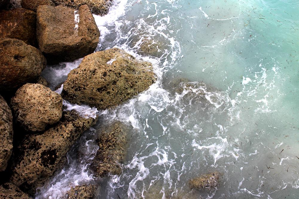 IHEARTALICE_Bahamas_74