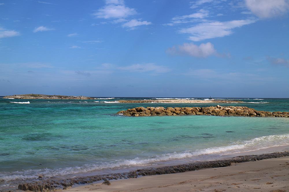 IHEARTALICE_Bahamas_89
