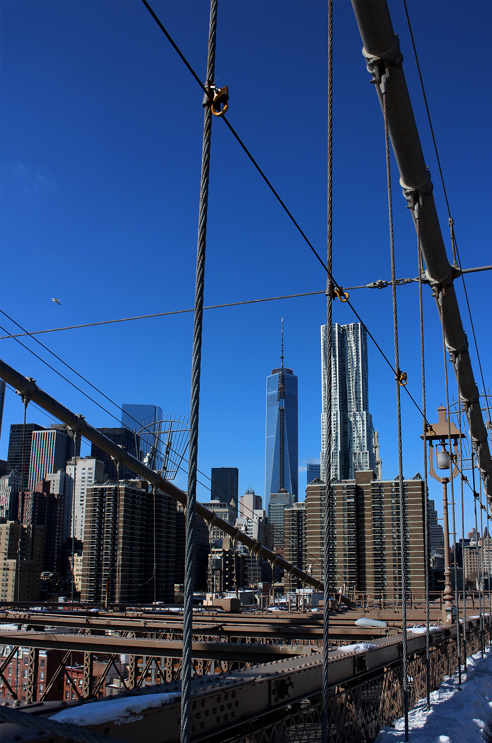 IHEARTALICE_brooklynbridge_02
