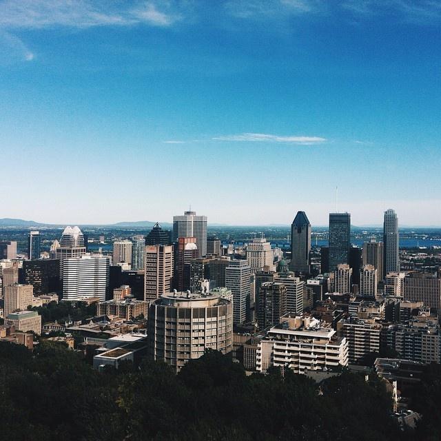 pignon_montreal