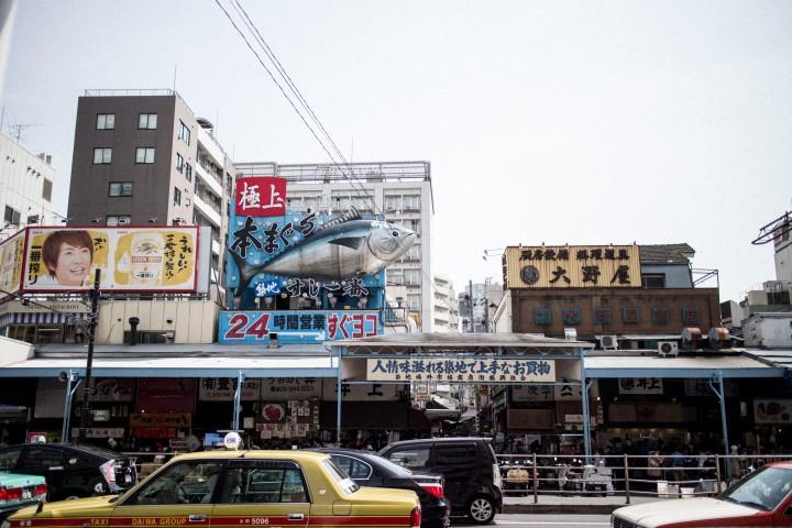 Japan Travel Diary: Tokyo Tsukiji Fish Market