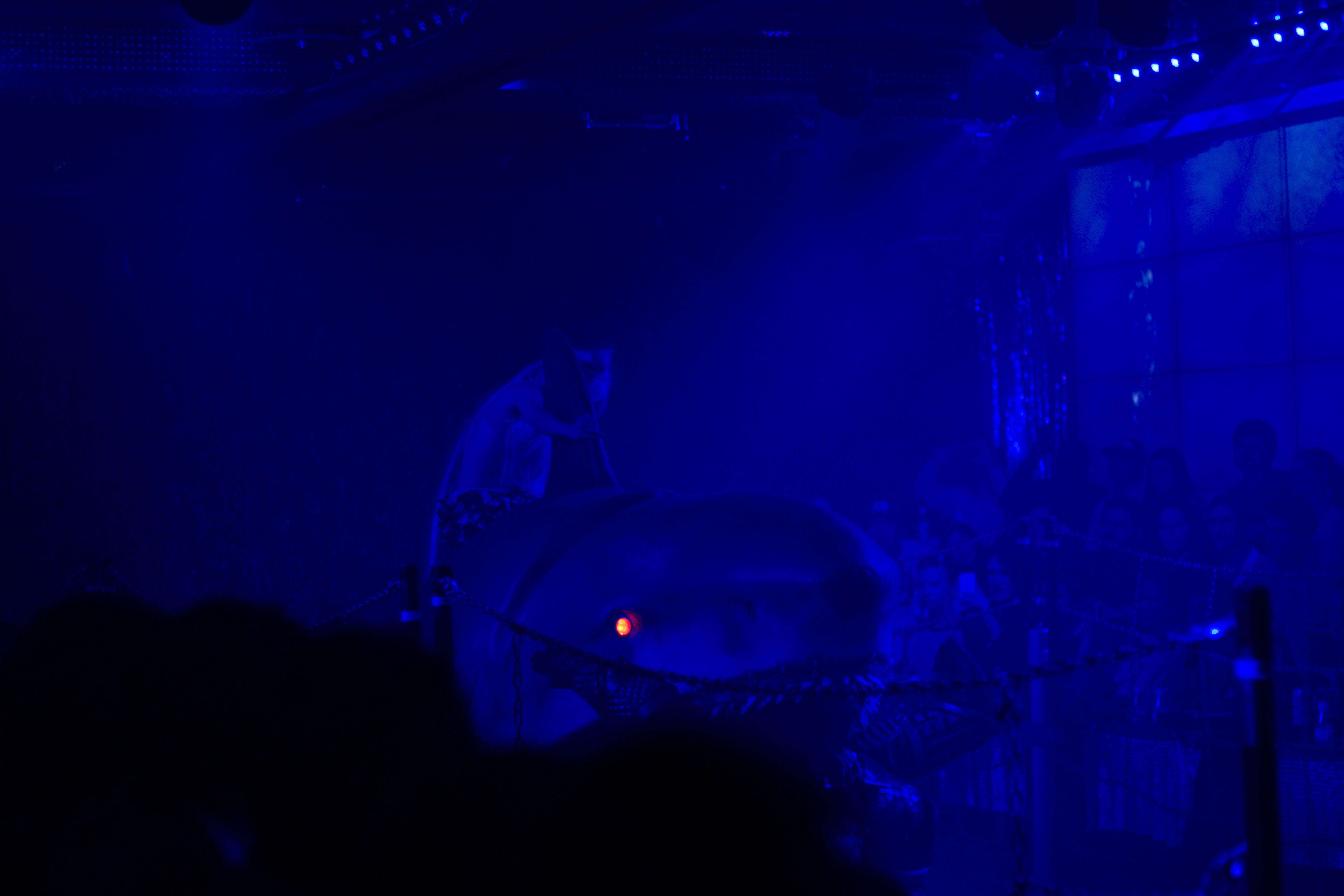 IHEARTALICE_tokyo_robotershow_03