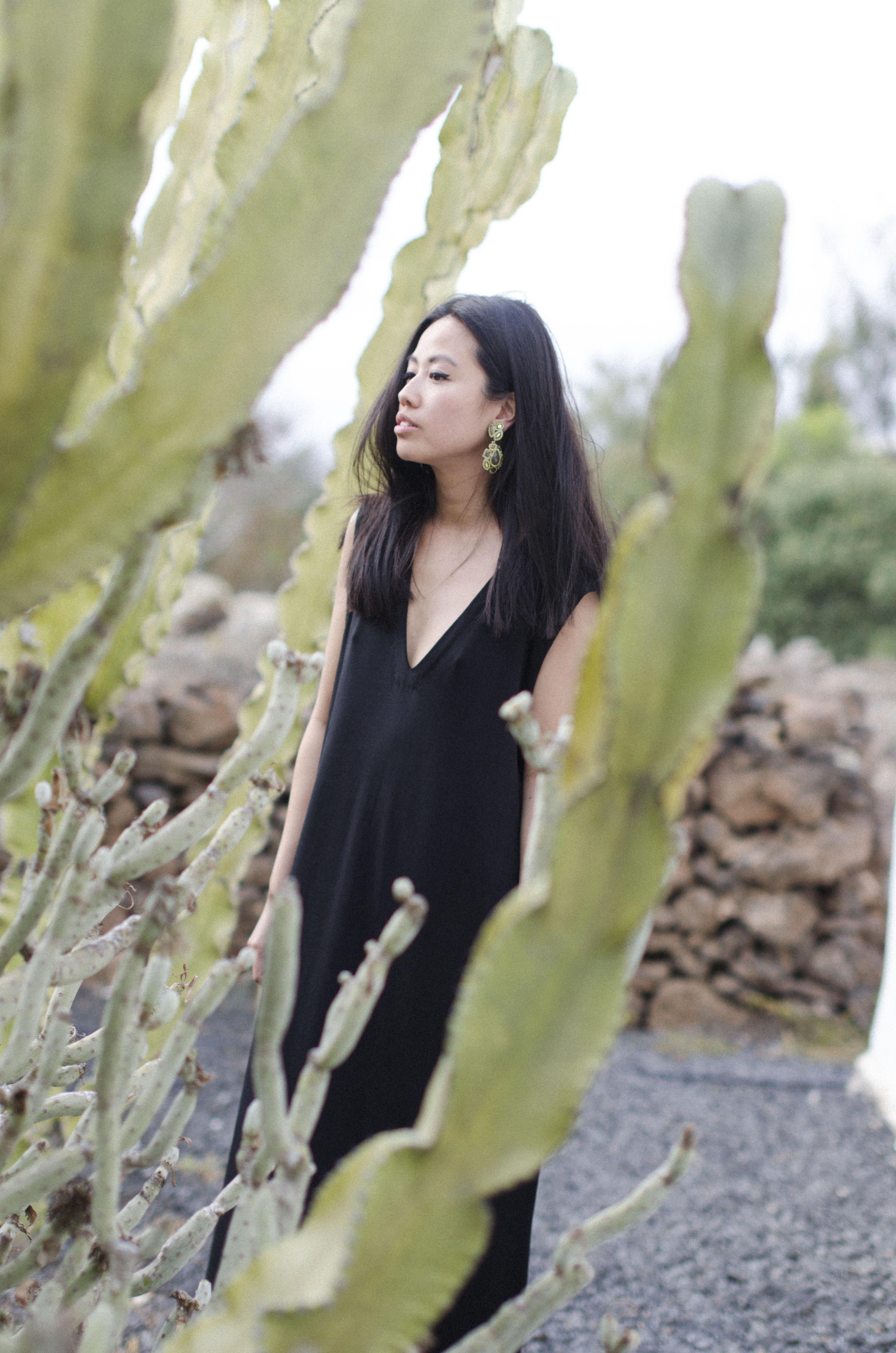 IHEARTALICE_cactus_01