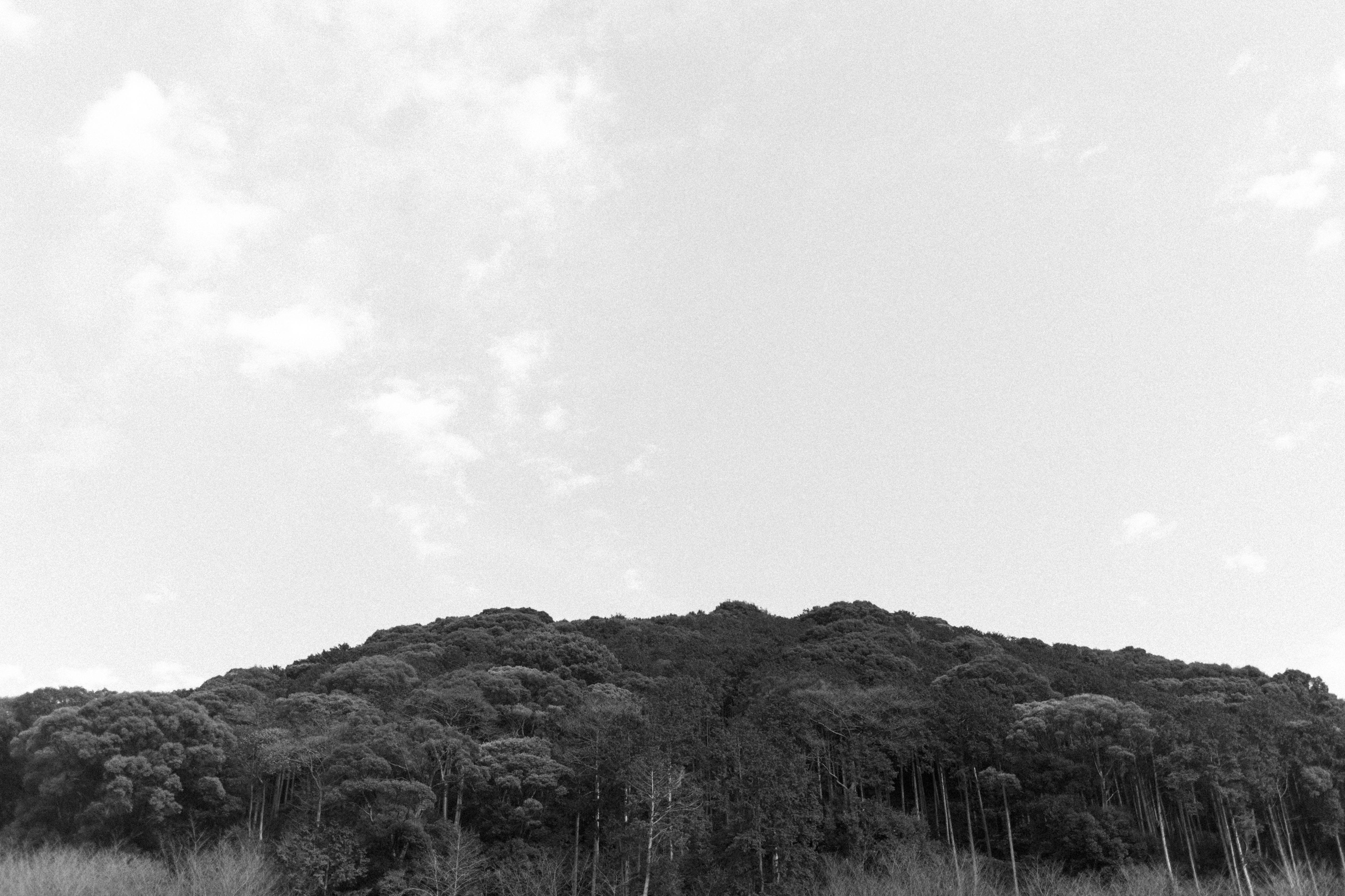 IHEARTALICE_kyoto_17