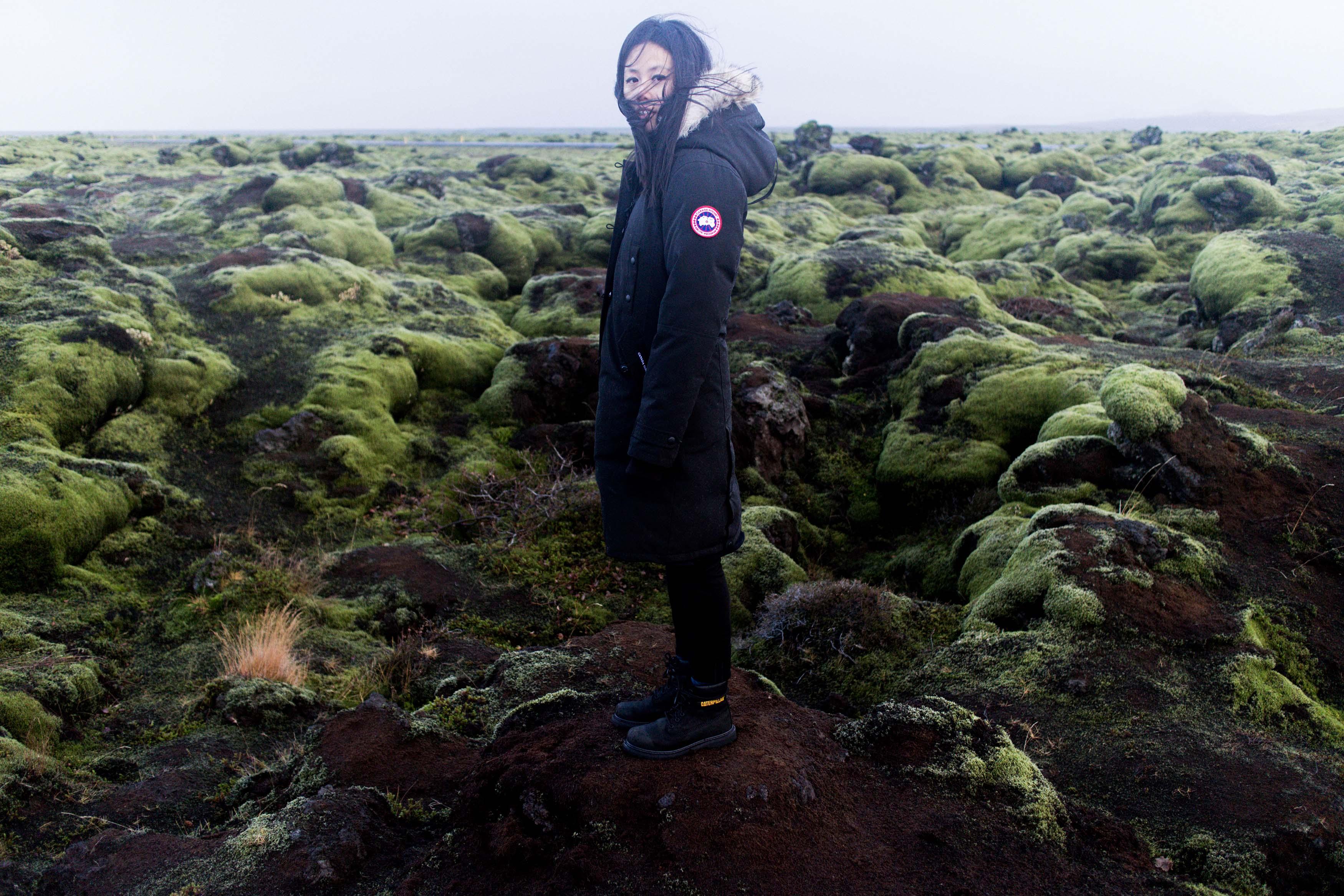 Iceland Food & Travel Diary